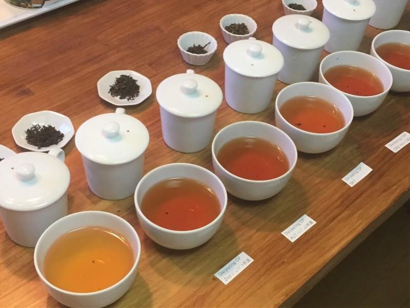 紅茶の飲み比べ
