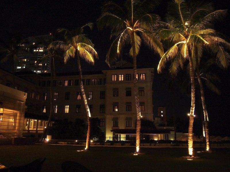 ゴールフェイスホテルの海岸から見えるヤシの木